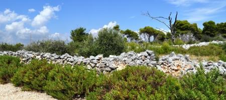 Trogir, Žedno Terrain agricole